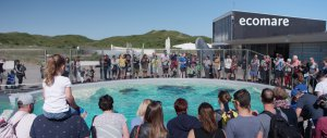 Zeehondenopvang Ecomare Texel