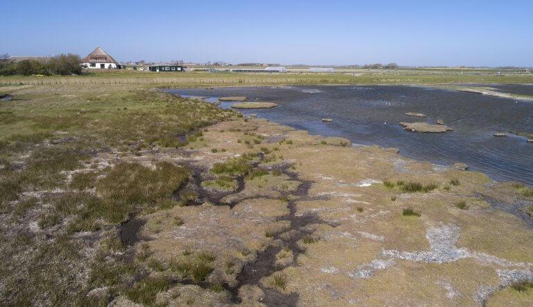 Natuurgebied De Petten op Texel