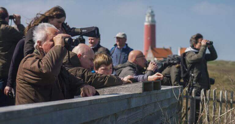 Vogelspotten op Texel - Texel Informatie