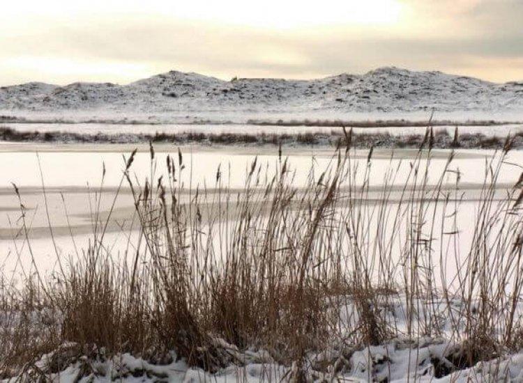 Het Grote Vlak in de winter